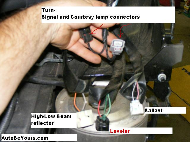 wiring for headlight toyota prius